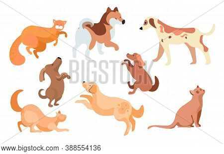Collection Of Feline And Canine Animals. Isolated Set Of Dogs And Cats, Mammals With Furry Coat And