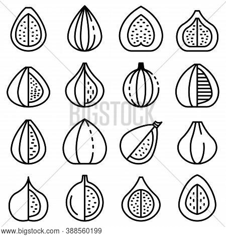 Figs Icons Set. Outline Set Of Figs Vector Icons For Web Design Isolated On White Background