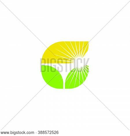 Letter G Logo From Leaf Shape With Bright Sunshine