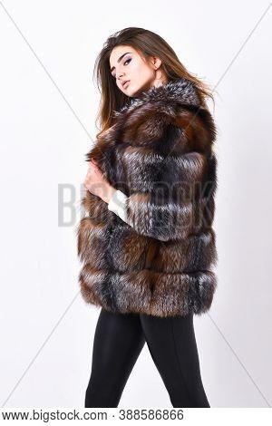 Woman Makeup And Hairstyle Posing Mink Or Sable Fur Coat. Female Brown Fur Coat. Fur Store Model Enj