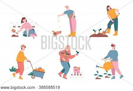 Man And Woman Characters Harvesting And Planting Vegetables In Farm Graden. Vector Illustration Set