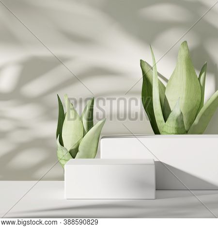 3d Background. Podium, Pedestal  And Green Plant On White With Monstera Palm Shadow. Beauty, Natural