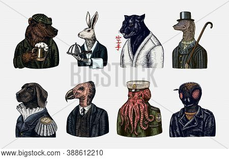 Grizzly Bear With A Beer Mug. Octopus Sailor And Hare Or Rabbit Waiter. Dog Officer And Bird. Black