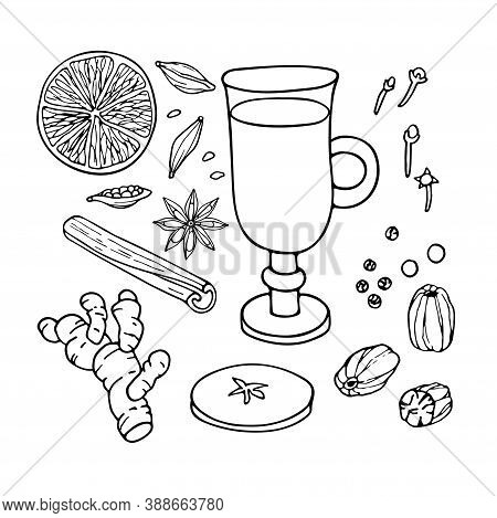 Mulled Wine Ingredients Set. Hand Drawn Winter Elements. Doodle Outline Vector Illustration. Hot Win