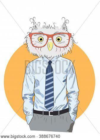 Animal Fashion Illustration, Anthropomorphic Design, Furry Art, Hand Drawn Illustration Of An Owl Bo