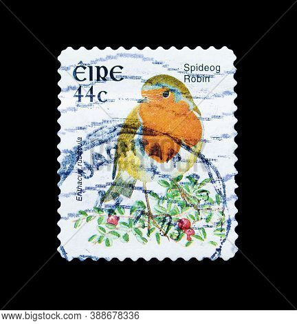 Ireland - Circa 2003 : Cancelled Postage Stamp Printed By Ireland, That Shows Spideog Robin, Circa 2