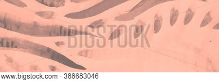 Trendy Invitation. Pink And Coral Rose Wave Decor. Sketch Background. Cerise Traditional Design With