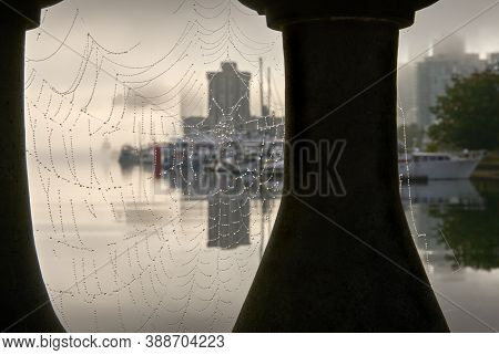 Cobwebs In Coal Harbour Stanley Park. The Vancouver Skyline From The Stanley Park Seawall On A Foggy