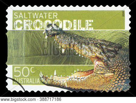 Australia - Circa 2006: A Cancelled Postage Stamp From Australia Illustrating Australian Saltwater C