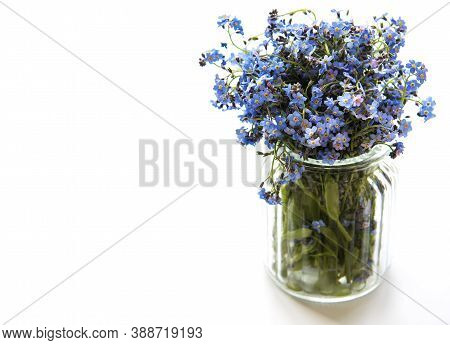Bouquet Of Forget-me-not Flowers In Glass Vase