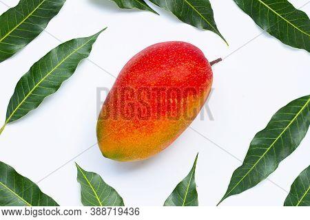 Tropical Fruit, Mango On A White Background.