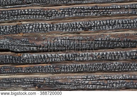 Close-up Of Charred Walls Of A Wooden Blockhouse. The Old Charred Wall Of The House. Horizontal Line