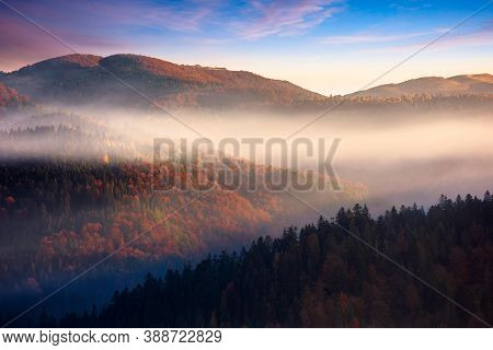 Rolling Hills In Fog At Sunrise. Beautiful Mountain Landscape In Autumn Season. Clouds On The Mornin