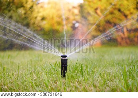 Sprinkler Of Automatic Lawn And Home Garden Irrigation System