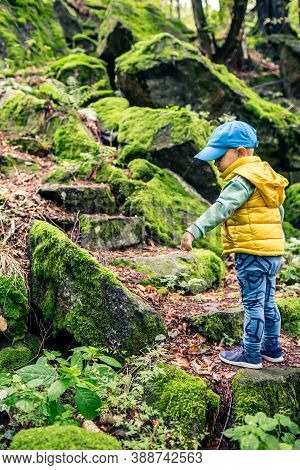 Little Boy Hiking Adventure And Climbing In Mountains. Small Child Walking In Rocky Green Forest.