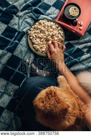 Movie Night Concept. Top View Of A Girl With A Cat, Popcorn And Tea On A Soft Blue Blanket.