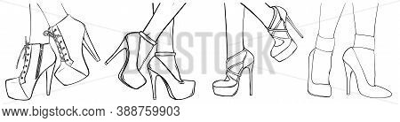 Fashion High Heels Shoes. Vector Art Illustration.