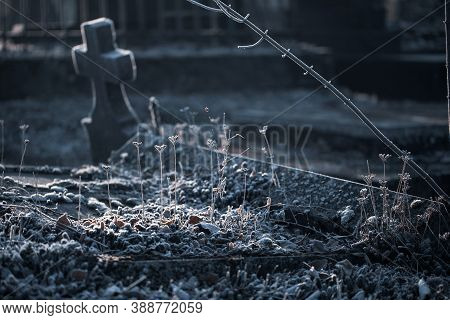 Beautiful Frozen Grass On Cold Autumn Fall Morning In Cemetery Graveyard With Old Stone Tombstone Gr