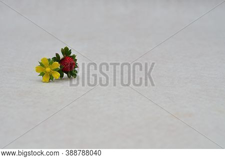 A Red Strawberry With A Yellow Flower On A White Background
