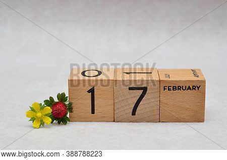 17 February On Wooden Blocks With A Strawberry And Yellow Flower On A White Background