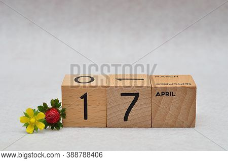17 April On Wooden Blocks With A Strawberry And Yellow Flower On A White Background