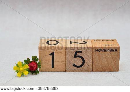 15 November On Wooden Blocks With A Strawberry And Yellow Flower On A White Background