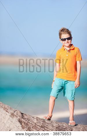Cute boy standing on coconut palm