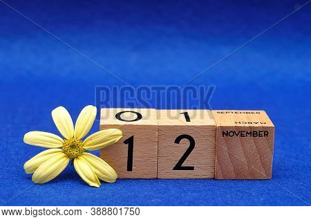 12 November On Wooden Blocks With A Yellow Flower On A Blue Background