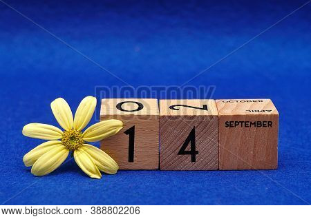 14 September On Wooden Blocks With A Yellow Flower On A Blue Background
