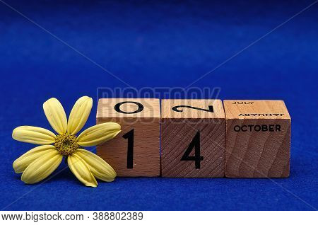 14 October On Wooden Blocks With A Yellow Flower On A Blue Background