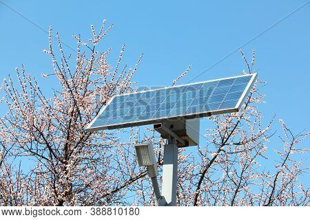 Solar Battery Against The Background Of Flowering Trees And The Sky. Solar Battery And Diode Lamp. S