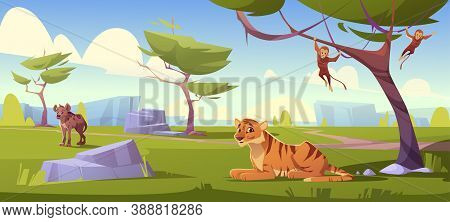 Savannah Landscape With Tiger, Monkeys And Jackal. Vector Cartoon Scenery Of African Savanna, Summer