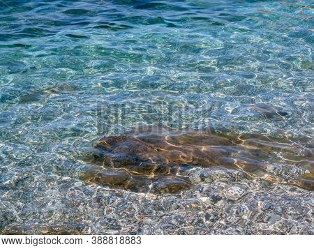 Sunlight Reflects On A Sea Surface. Abstract Water Background. Clean Transparent Water Backdrop. Tex