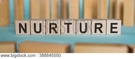 Nurture Word Written On Wooden Cubes On Blue