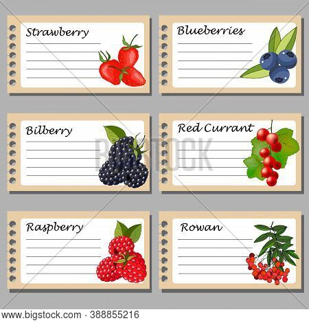 Labels For Preserves, With Berries, For Text