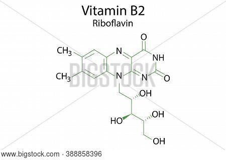 Vitamin B2, Great Design For Any Purposes. Biology, Science Background. Symbol Medicine. Molecular S