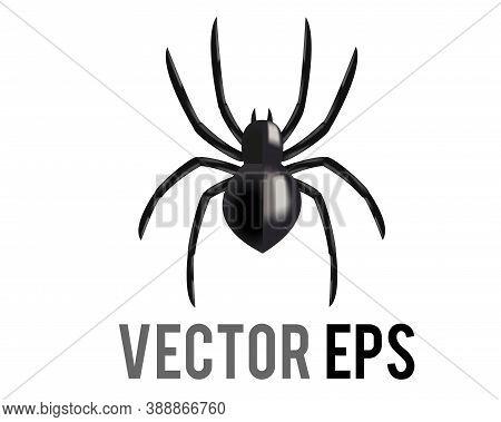 Vectot Black Eight Legged Arachnid Or Spider Icon