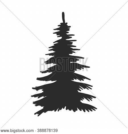 Tree, Christmas Fir Tree, Black Silhouette Isolated On White Background. Vector, Spruce Tree Silhoue