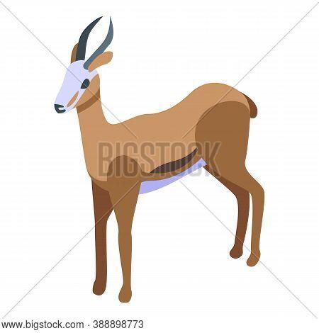 Springbok Gazelle Icon. Isometric Of Springbok Gazelle Vector Icon For Web Design Isolated On White