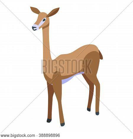 Animal Gazelle Icon. Isometric Of Animal Gazelle Vector Icon For Web Design Isolated On White Backgr