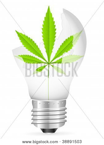 Broken Light Bulb And Marijuana Leaf