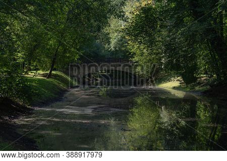 Bridge In The Forest. Nature Landscape With Small River