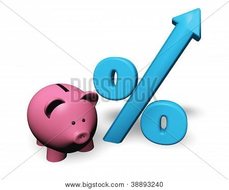 Piggybank Growing Percent