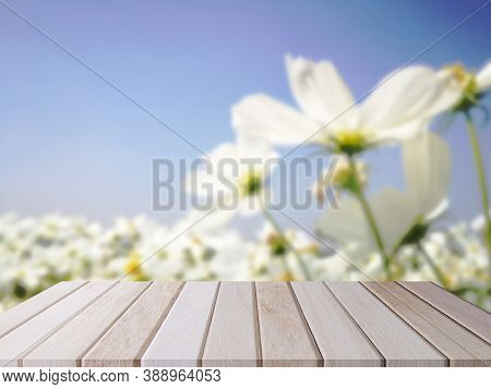 Shelf Of Brown Wood Plank Board With Blurred Garden White Flower And Blue Sky Background.