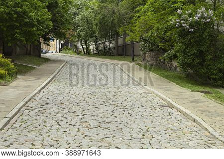 The Cobbled Street Of The Old City With Green Trees Rises Up. City Street In The Center Of The Old C