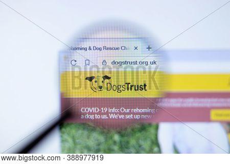 New York, Usa - 29 September 2020: Dogstrust Dogstrust.org.uk Company Website With Logo Close Up, Il