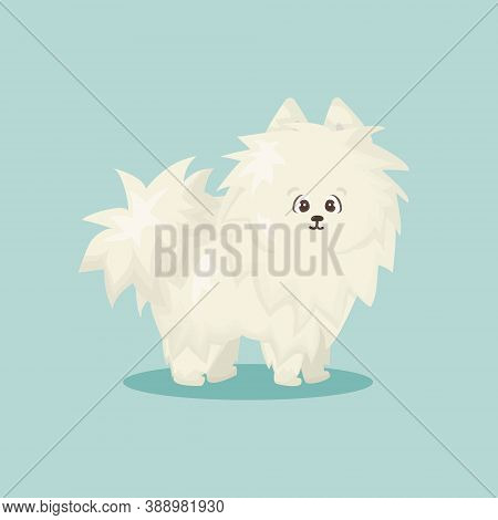 White Fluffy Cartoon Happy Isolated Vector Flat Dog On Blue Or Green Background