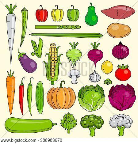 Healthy Fresh Vegetables, Icons, Vegan, Indian Mixed Vegetables,