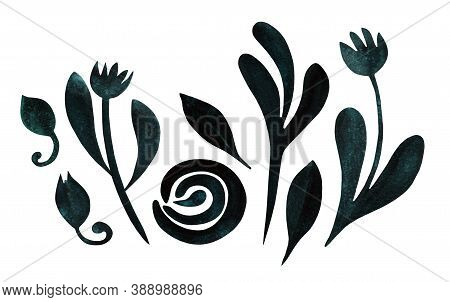 Set With Autumn Flowers, Leaves, Buds Isolated On White. Boho Watercolor In Trendy Earthy Dark Green