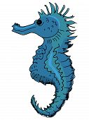 hand drawn illustration of the seahorse on white poster